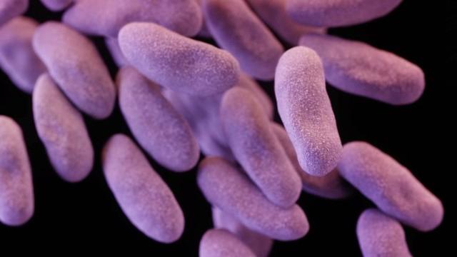 Spread of Drug-Resistant Superbug Increases Five-Fold in Southeastern U.S.